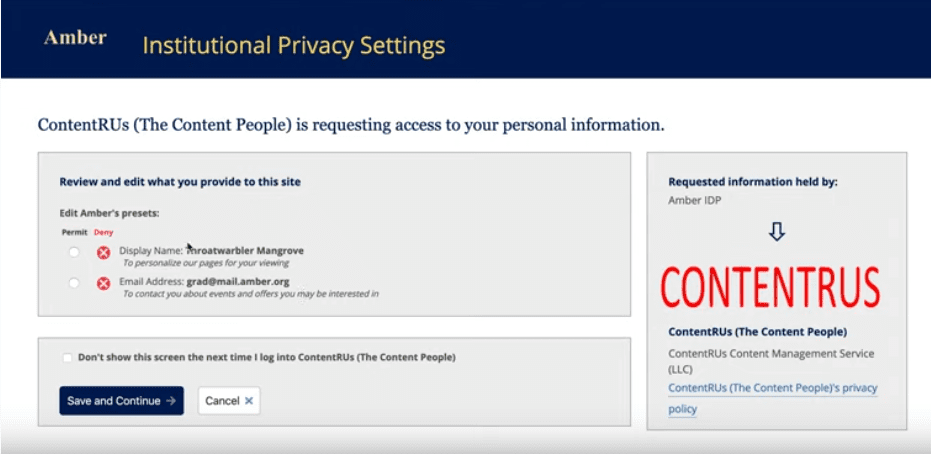 Slide from the user consent demo video
